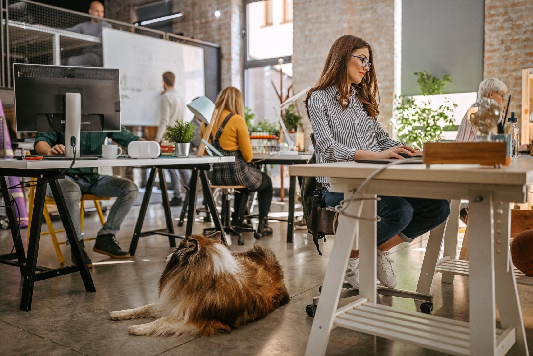 Cum mentii o cultura organizationala solida cand lucrezi de acasa